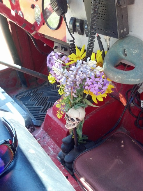 Wildflowers and the Jeep
