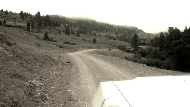 Headed East up in the Wolf Mtns...