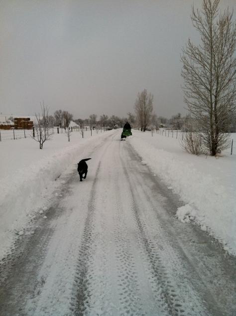Long road in -