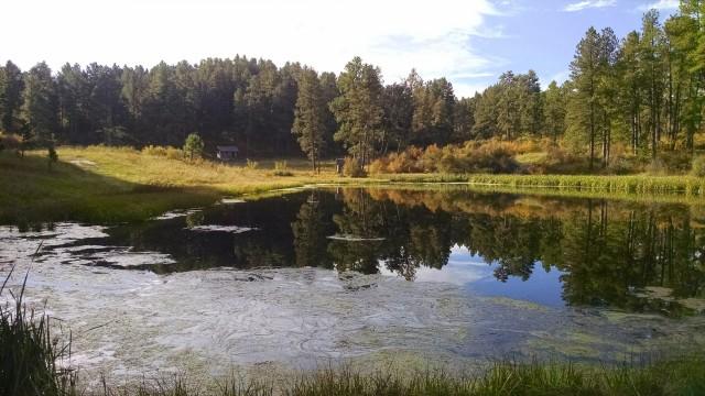 4H Pond